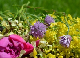 Flori bio comestibile 100g