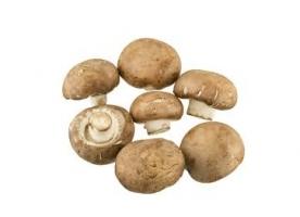 Ciuperci brune eco