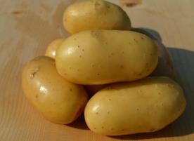 Cartofi eco