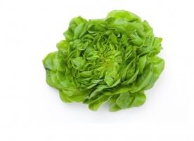 Salata verde creata bio, gi