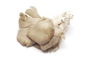 Ciuperci pleurotus bio, 400g, gi