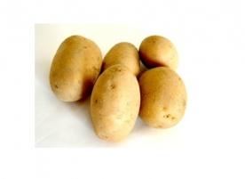 Cartofi bio mici, gi
