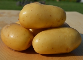 Cartofi bio