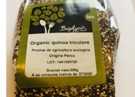 Quinoa tricolora eco