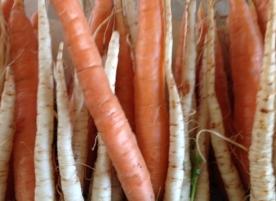 Mini diversificare_morcovei, pastarnac si cartof eco
